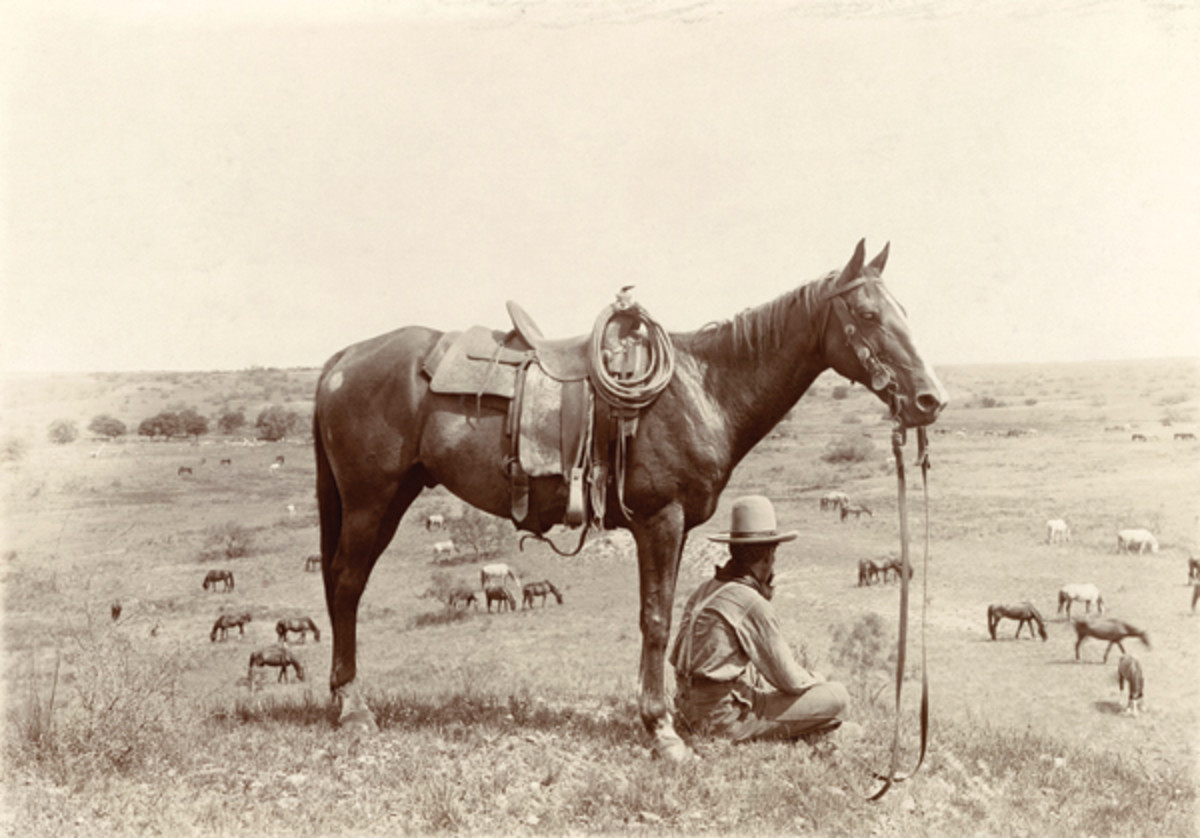 Surprising Facts About American Cowboys and the Old West