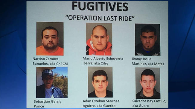 Motorcycle Gang Busted for Stealing Over 150 Jeep Wranglers